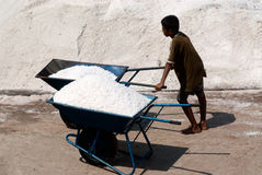 Workers are working at a salt farm in Thailand. SAMUTSONGKHRAM,THAILAND - FEB 18: Unidentified workers carrying salt at the salt farm on February 18,2014 in stock images