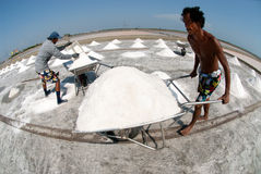 Workers are working at a salt farm in Thailand. SAMUTSONGKHRAM, THAILAND - FEB 18: Unidentified workers carrying salt at the salt farm on February 18, 2014 in royalty free stock images