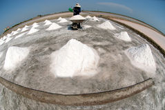 Workers are working at a salt farm in Thailand. SAMUTSONGKHRAM,THAILAND - FEB 18: Unidentified workers carrying salt at the salt farm on February 18,2014 in stock image