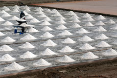 Workers are working at a salt farm in Thailand. SAMUTSONGKHRAM,THAILAND - FEB 18: Unidentified workers carrying salt at the salt farm on February 18,2014 in stock photography