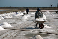 Workers are working at a salt farm in Thailand. Royalty Free Stock Image