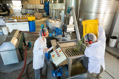 Workers working together near production line Stock Photography