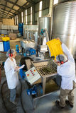 Workers working together near production line Royalty Free Stock Photos