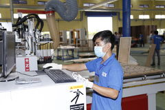 Workers are working in a wood factory for exporting Royalty Free Stock Images