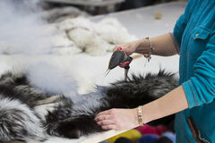 Workflow and making the animals fur Royalty Free Stock Image