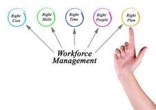 Workforce Management targets. Woman presenting Workforce Management targets Stock Photos