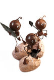 Working Ants royalty free stock image