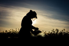 Working apiarist silhouette. Working apiarist silhoutte with the smoker on the field. Backlit scene Royalty Free Stock Photo