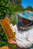 Working apiarist in a spring season. Royalty Free Stock Photo