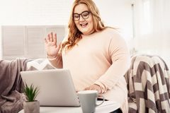 Resolute contented overweight woman with glasses on. Working as freelancer. Resolute contented overweight woman with glasses on relaxing at her apartment royalty free stock images