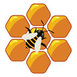 Working bee on honeycells, vector  Royalty Free Stock Photo