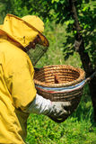 Working beekeeper stock image