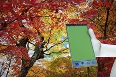 Working on big mobile phone Stock Photo