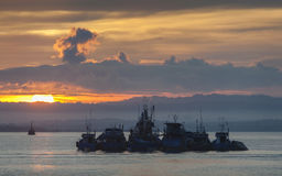 Working Boats Anchored in Sorong Harbor at Sunrise Stock Photography