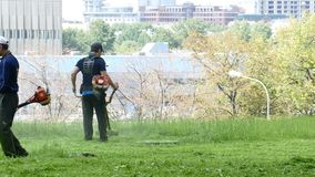 Working from Central Asia mow park Moscow, Russia. JUL 11, 2015 Working from Central Asia mow park Moscow, Russia. In Moscow, at the same time there are up to stock footage