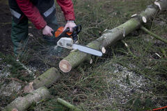 Working with chainsaw Royalty Free Stock Photos