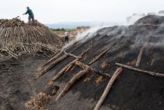 Working in charcoal production Royalty Free Stock Photography