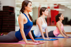 Working on the cobra yoga pose. Cute Hispanic women practicing the cobra pose during their yoga class in a gym