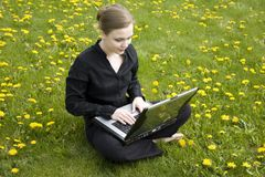 Working On Computer Stock Image