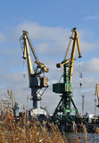 Working cranes Stock Photography