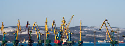Working cranes. Port of Murmansk. Working cranes. It is winter Royalty Free Stock Photography