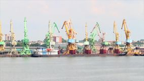 Working cranes at port stock video footage