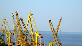 Working cranes in the seaport. On the horizon is visible city stock footage