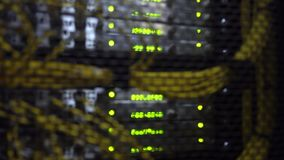 Working data servers with flashing LED lights. Blurred background. Yellow cable. Datacenter in blue light stock footage