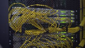 Working data servers with flashing LED lights. Blurred background. Yellow cable. Datacenter in green light stock video