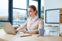 Concentrated businesswoman working with a laptop Royalty Free Stock Image