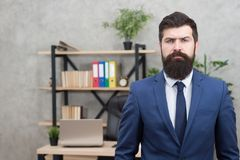 Working day. Male working in business office. Bearded man. Mature hipster with beard. Confident brutal man. Business royalty free stock photography