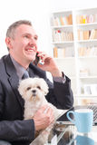 Working with dog in the office. Man working in the office and holding his liitle dog stock photo