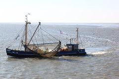 Working fishermen at shrimper, dutch Waddensea, Ameland Stock Photos