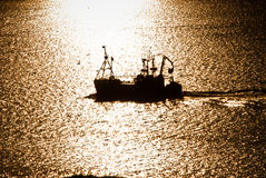 Working fishing boat during sunset Stock Images