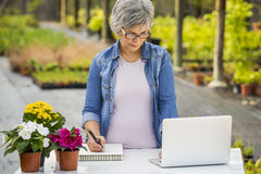 Working in a flower shop Royalty Free Stock Photography