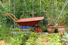 Working the garden. Wheelbarrow in front of  the greenhouse Royalty Free Stock Photography