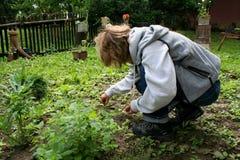 Working in the garden. Girl walking in the garden Stock Photos