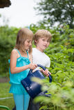 Working in the garden Stock Image