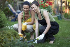 Working in garden Royalty Free Stock Photos