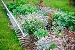 Working in garden. Detail of gardening with fane rake Stock Photo