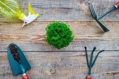 Working in garden. Gardening tools on wooden background top view Stock Image