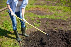 Working in the garden royalty free stock images