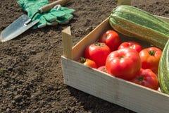 Working in the garden Stock Photo