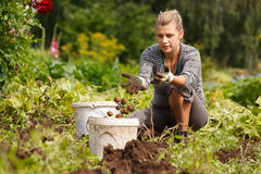 Working in garden royalty free stock photography