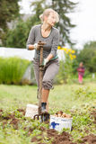 Working in garden Royalty Free Stock Image