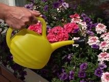 Working gardener Royalty Free Stock Image