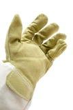 Working Glove Stock Image