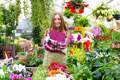 Working in the greenhouse Stock Image