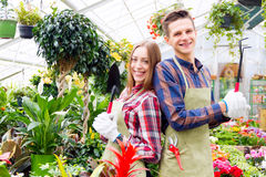 Working in the greenhouse Royalty Free Stock Photography