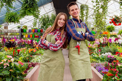 Working in the greenhouse Stock Images